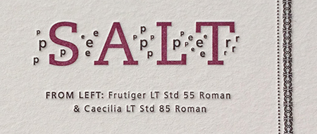 Poster Details: Salt and Pepper - Typographic Matchmaking